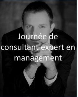 Journée de consultant expert en management