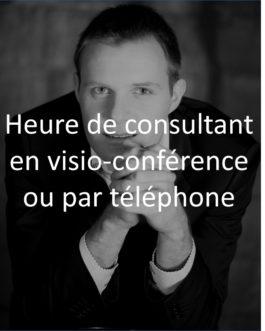 Heure de consultant expert en management